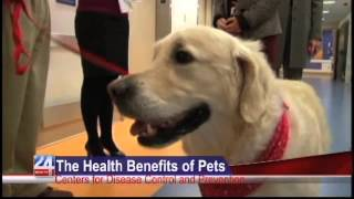 The Health Benefits of Pets: Centers for Disease Control and Prevention