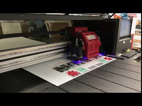 EFI 5' Flatbed Printing