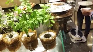 Breakfast buffer for $10 at Chatrium Riverside hotel in Bangkok