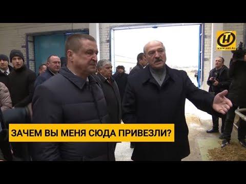 Лукашенко уволил губернатора Могилёвской области... Что он увидел на ферме в Шкловском районе?