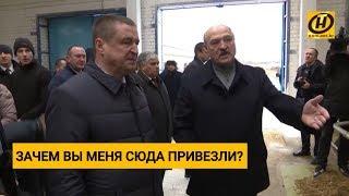Лукашенко уволил губернатора Могилёвской области... Что он увидел на ферме в Шкловском районе