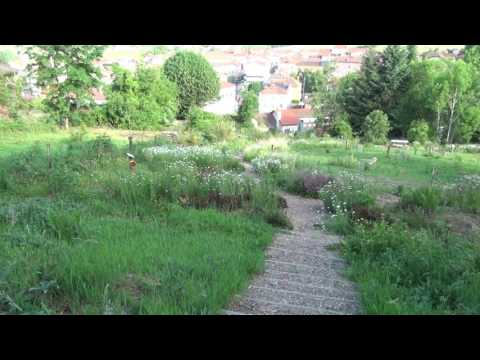 Sentier Botanique de Romarin 29 05 2017