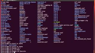 Linux Commands for Beginners: 02 - Navigating The File System