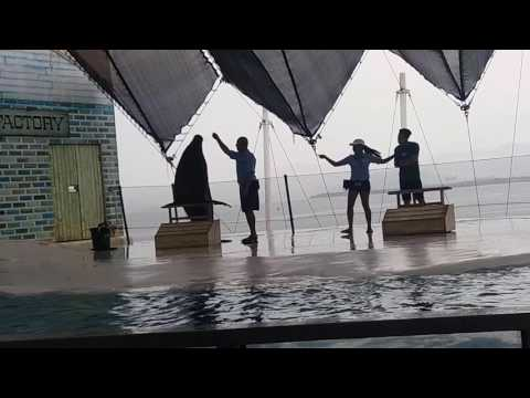 Sea Lion Show at Subic Bay Philippines