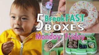 Kiddies Schulbrote Teil 3 | BreakFAST Hacks | Lunchbox | mamiblock kiDchen