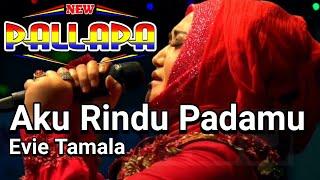 New Pallapa Terbaru Evie Tamala Aku Rindu Padamu Live Pelabuhan Kluwut Brebes 2019
