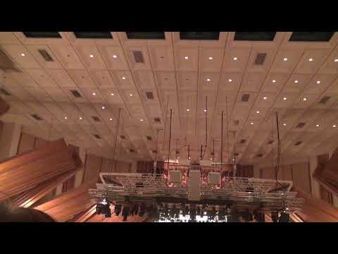 Organ instrument performance 2017