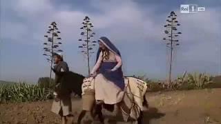 [SUB] Bông Hồng Dâng Mẹ-Mai Thiên Vân  Lyric