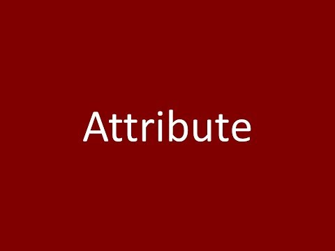 Attribute Meaning Definition Pronunciation Example Synonym Antonyms