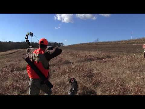 Pheasant Hunt With Bow // Season 1 // Episode 4 // TNT Outdoors