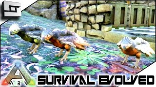 ARK: Survival Evolved - PERFECT PTERANODON TAME! S2E61 ( Gameplay )