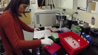 Unlocking DNA: The Center for Comparative Genomics | California Academy of Sciences