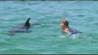 I Got to Swim With a Wild Dolphin!