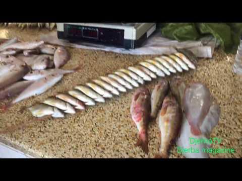 """Djerba: ✅ """" Marché de poissons - Houmt Souk"""", une émission exclusive de DjerbaTV"""