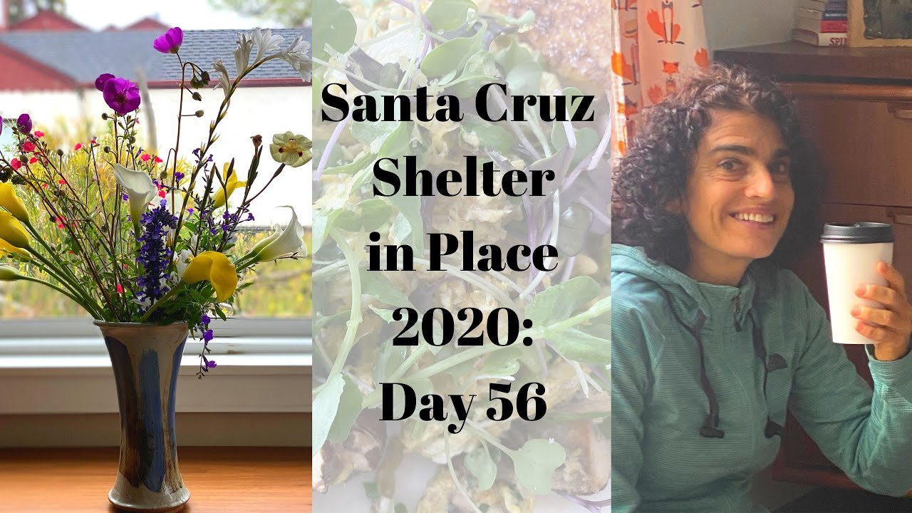 Santa Cruz Shelter in Place 2020: Day 56