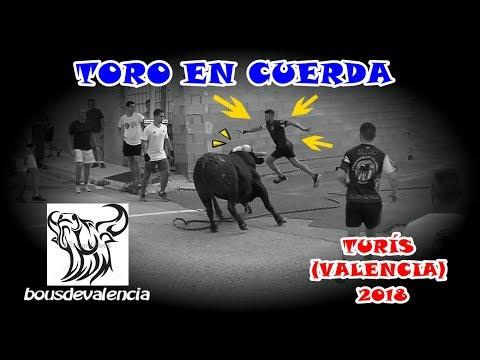 BOUS AL CARRER - TURÍS (V) 2018 - TORO EN CUERDA FERNANDO MACHANCOSES 14-8-2018