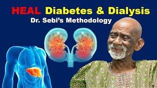 How To Heal Pancreas (Diabetes) & Kidneys (Dialysis) - Dr. Sebi Methodology