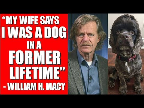 WILLIAM H. MACY was A DOG in a FORMER LIFETIME ? THE LAYOVER INTERVIEW, TRAILER, KATE UPTON