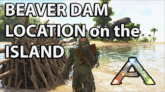 Beaver dams locations tips for looting ark survival evolved beaver dam locations on the island map ark survival evolved castoroides malvernweather Choice Image