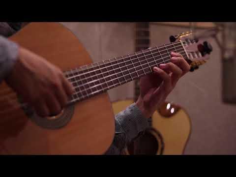 Classical Guitar Piece; Moon River
