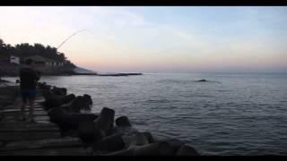 Рыбалка в северном ГОА, каранкс.(Рыбалка в северном ГОА, каранкс. Клюнул на рассвете на сардину, в проводку в пол воды. Очень сильная рыбка...., 2015-02-08T06:58:19.000Z)