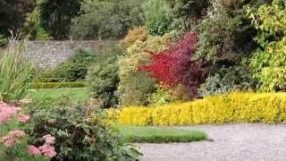 Geilston Garden in Scotland