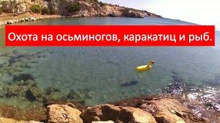 Подводная охота на море.Охота на осьминогов , каракатиц и рыб в Греции 2019.Spearfishing for octopus