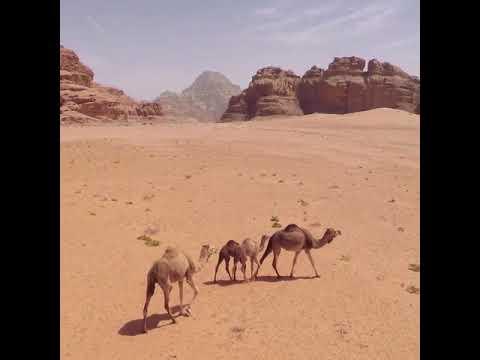 Portfolio Travel - Jordânia