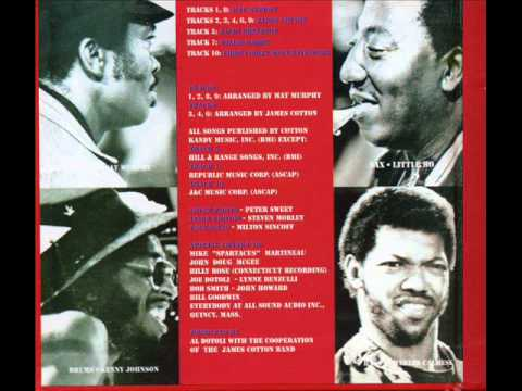 The James Cotton Band How Long Can A Fool Go Wrong
