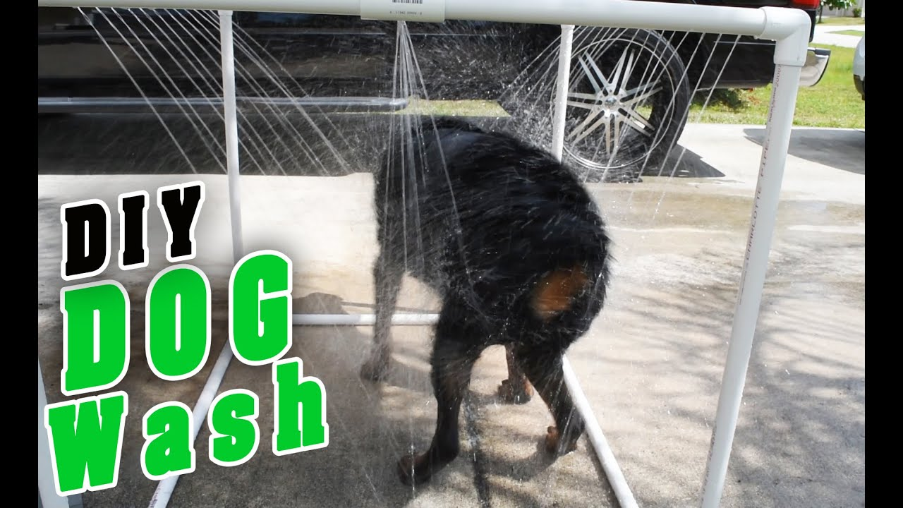 How To Build A Dog Shower