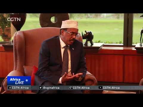 Somalia and Kenya suspend construction of border wall