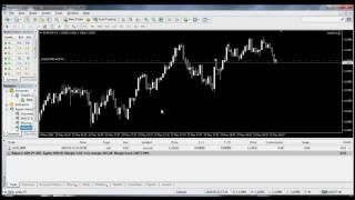 Forex Robot Trading (forex EA) sinhala