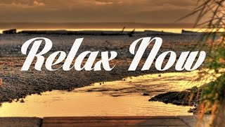 Relaxing Chillout & Lounge Mix Del Mar