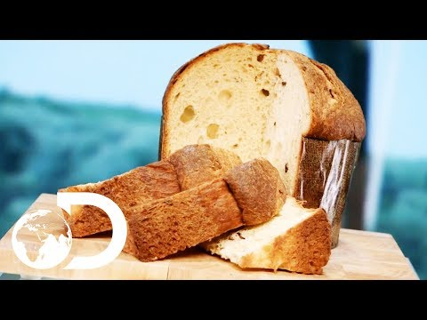 PANETTONE | How It's Made