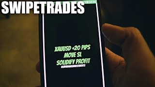 SwipeTrades The #1 Forex Signals App and How To Use it! IMarketsLive Product Overview
