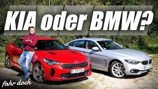 20.000€ Unterschied? BMW 440i Xdrive GC vs KIA Stinger GT | DUELL DER POWER GT´s  | Fahr doch
