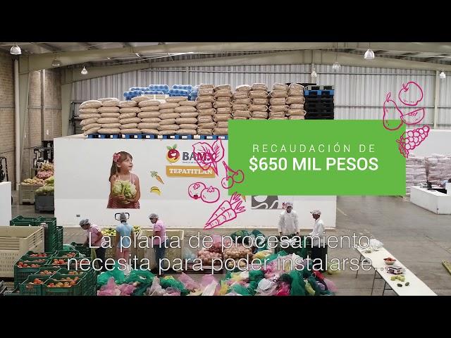 GiveOrg - México sin hambre/Proyecto