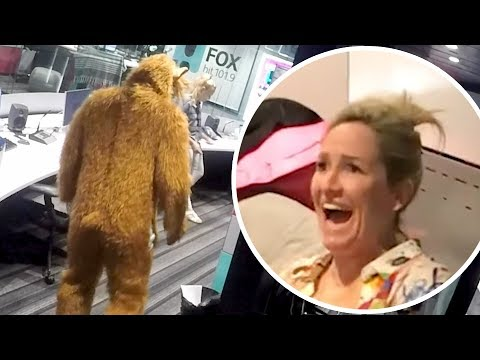 Fev Scares Daylights Out Of Fifi For Her Birthday | Fifi, Fev & Byron