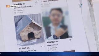 """""""Шуточка"""": полицейские не могут найти автора оскорбительного поста в соцсетях"""