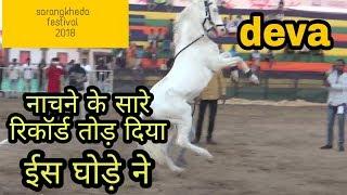 नाचने के सारे रिकॉर्ड तोड़ दिया देवा ने ||horse dance performance||chatak festival,