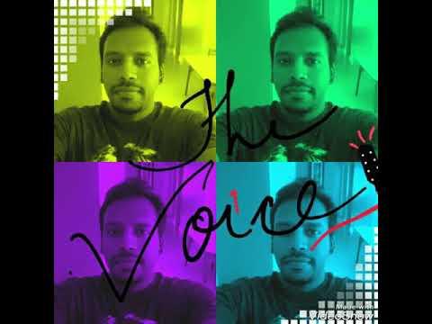 Shining In The Setting Sun (Tera Hone Laga Hoon) | Atif Aslam| Voice Cover by Vinay AKA Ranga