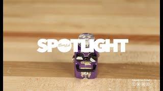 Hotone Wally+ Mini Looper Quicklook