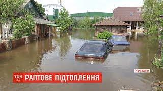 Свійські тварини загинули унаслідок потопу на Рівненщині