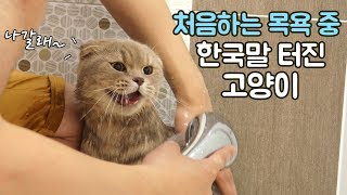 Iz's First Time Bathing and Iz Speaks Korean?!
