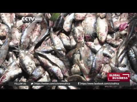 Fishermen and farmers in Ghana worried about impact of new gas plant