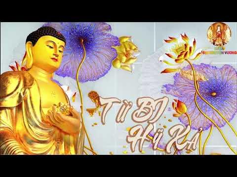 Từ Bi Hỷ Xã - Lời Phật Dạy Về Đạo Làm Người Để Có Hạnh Phúc An Vui -(Phần 1)