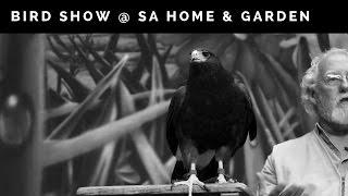 Last Chance Forever @ San Antonio Home & Garden Show