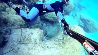 Ahmet Ercan - Mixed Spearfishing - Cyprus (Sea Bass, Mullet, Melana)
