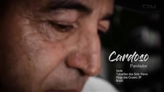 My T7M - Minha história no mergulho | Cardoso.