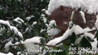 видео Достопримечательности  Гурзуфа. Парк.